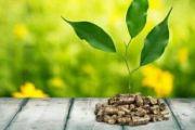 IMPIANTI A BIOMASSA - cos'è, costo, vantaggi e svantaggi 2018